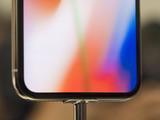 银色苹果iPhone X(64GB)第25张图